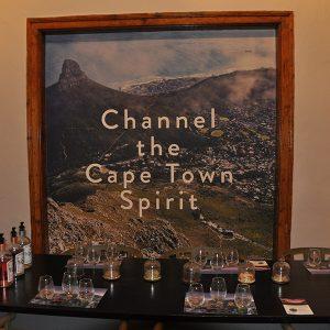 cape town gin tour